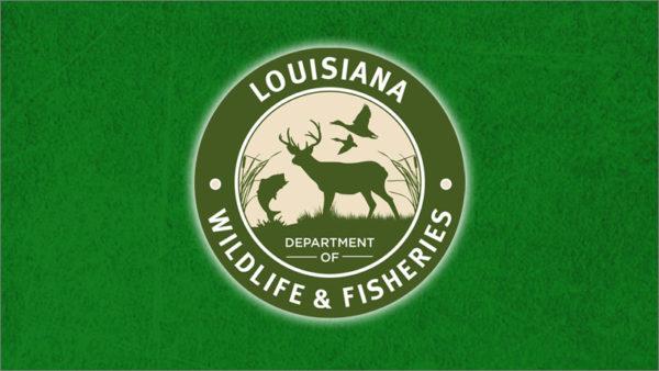 LDWF seeks public input on draft Louisiana 2019 Flood Disaster Spend Plan