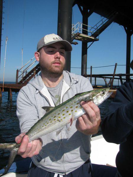 Top Fishing Tips For Spanish Mackerel
