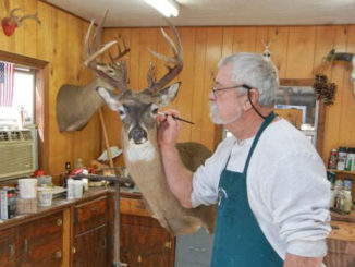 You can drop your trophy off at a cheap taxidermist — or you can invest in a mount that will provide years of enjoyment.