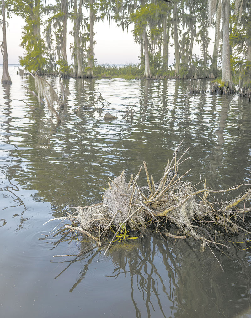 Don't rely on the cover you see to determine where to drop your crappie jig. Imagine what the underwater cover you can't see looks like and fish accordingly.