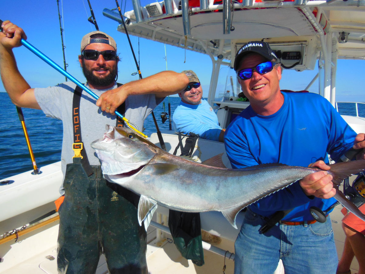 Amberjack are just one of a handful of fish that can be caught around rigs and wrecks by anglers deep-jigging.