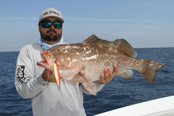 Blade jigs allow anglers to quickly reach deep fish with an enticing presentation.