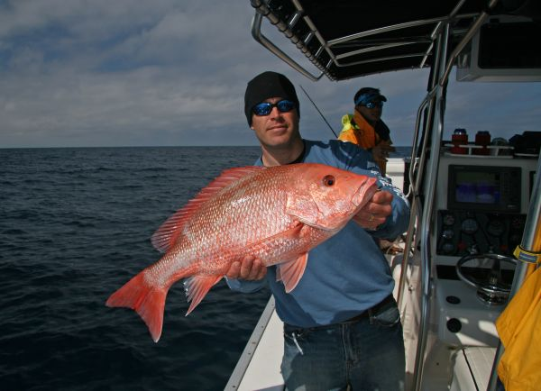 Big red snapper commonly attack jigs on the way down, so stay alert on the drops.