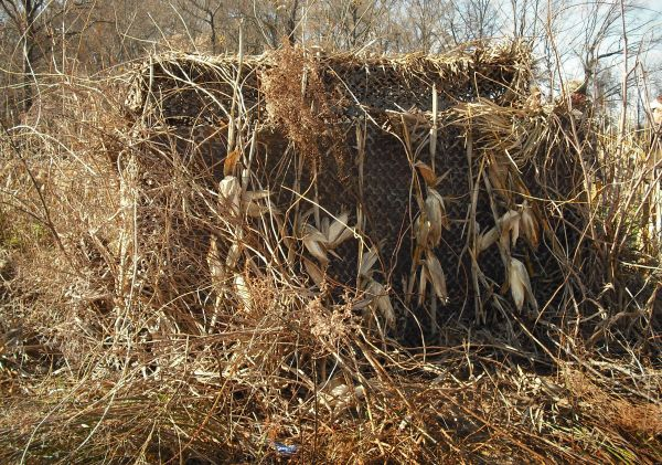 How To Brush A Duck Blind