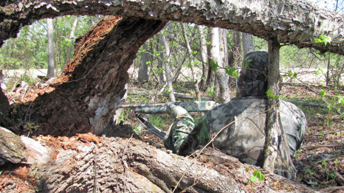 build the perfect deer-hunting ground blind