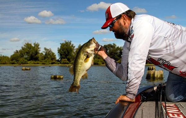 Winter Bass Fishing Lures To Keep Handy