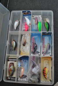 Kenny Allen uses a variety of colors, but prefers bright crankbaits.