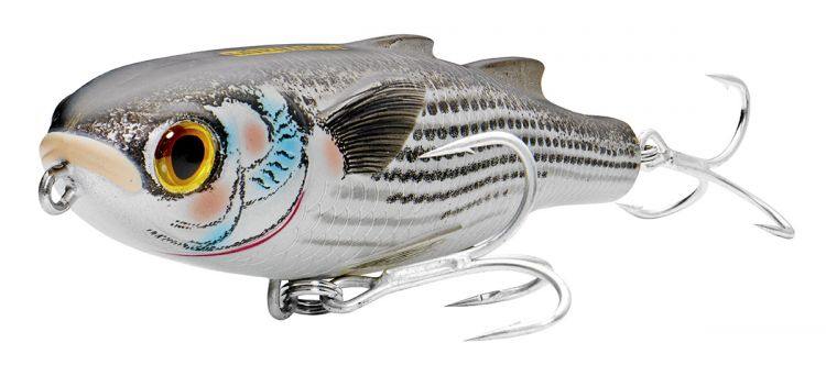 Mullet-imitating topwaters like the Live Target Mullet can be highly effective when predators target the real thing.