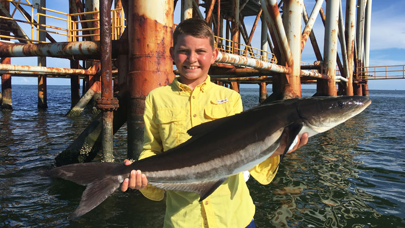 Mitchell Prokasy of Mandeville with a 39-inch cobia caught 8 miles out of Caminada Pass in Grand Isle in 60 foot of water.