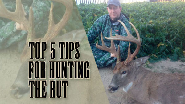 Top 5 tips for hunting the rut