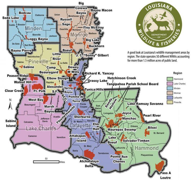 louisiana public hunting land map 2018 19 Wma Forecast louisiana public hunting land map
