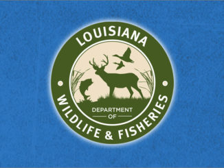 Louisiana Department of Wildlife & Fisheries