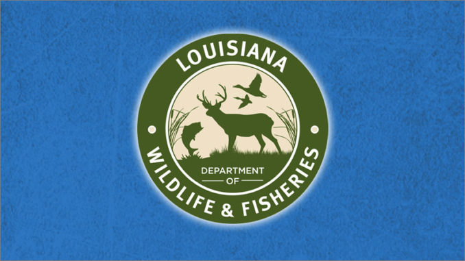 Louisiana Department of Wildlife & Fisheries