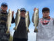 November is typically a prime month to catch speckled trout at the Trestles in Lake Pontchartrain.