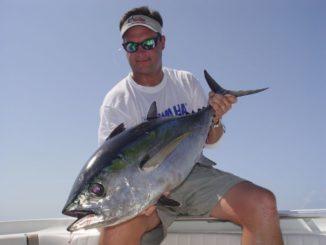 Blackfins