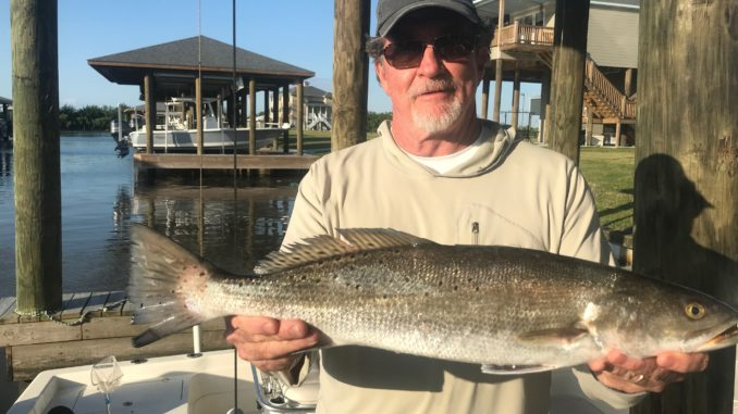 Aub Ward of Baton Rouge with a nice trout he caught at The Rocks in Shell Beach.