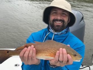 An unusually high Mississippi River out of Venice this fall has pushed redfishing further away from the dirty water — but the fish are still biting.