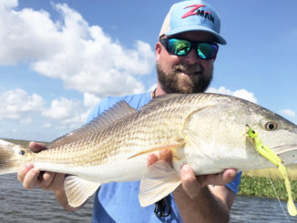 Glenn Young caught this redfish and a host of others on a Z-Man ChatterBait while fishing Venice last month.