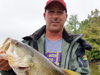 This 7-pound, 2-ounce bass was caught by Dusty Anders of Alexandria on a Top Toad in the 12-15 area.