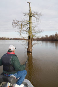 Murphy Royer strongly believes that individual trees will attract crappie at the same time of year, every year, while trees nearby never hold fish.