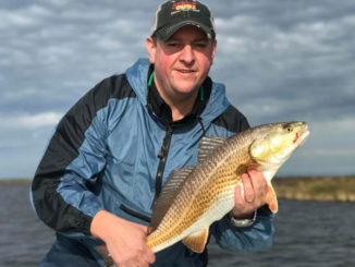 Capt. Charlie Thomason said low water conditions in January typically move redfish further away from the shoreline, so position your boat closer to the bank and cast away from it.