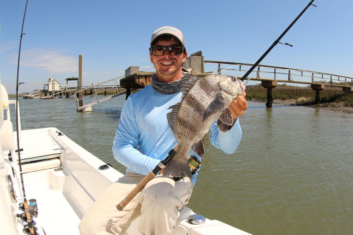 Species spotlight: black drum - Louisiana Sportsman Are Saltwater Sheepshead Fish Good To Eat