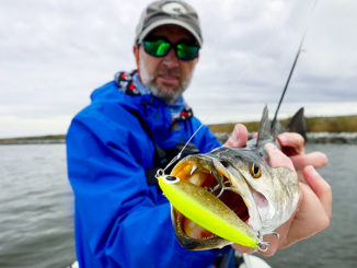How to use jerkbaits to catch monster specks