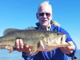 After some advice from John Dean, Ralph Daigle cast around hay grass in 5-foot depth and caught this lunker on a Carolina-rigged black super fluke in Housen Bay.