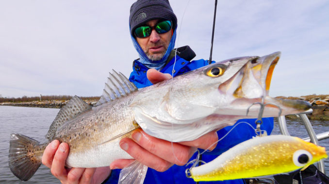 Fluorocarbon leaders are the norm when fishing jerkbaits because of its natural low visibility underwater.