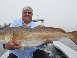Record fly-rod redfish?
