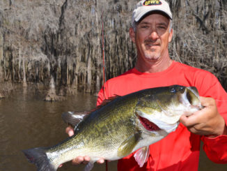The secret for success during spawning season is hitting as many trees as quickly as possible.