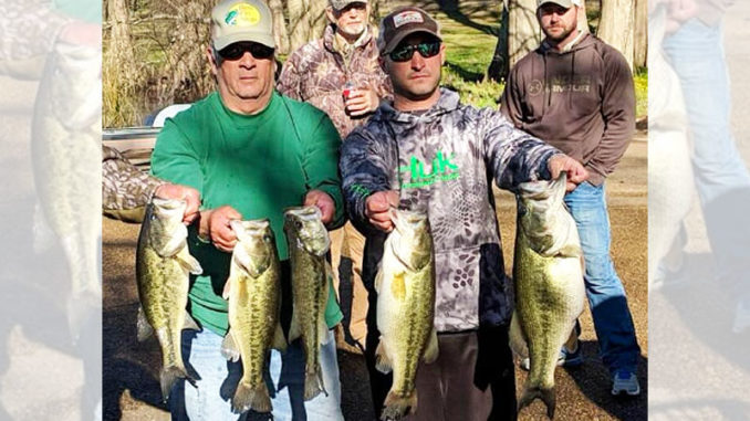 Five Lake Bruin bass like this will win any tournament or make any weekend angler happy.