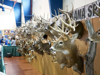 Louisiana Sportsman Show Big Buck Contest winners