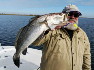 Dave Hall caught this 22-inch beauty fishing the MRGO.