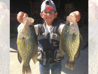 "Cayden Meche of Duson, who loves to fish and hunt, shows off two ""big hammers"" he caught at Henderson Lake."
