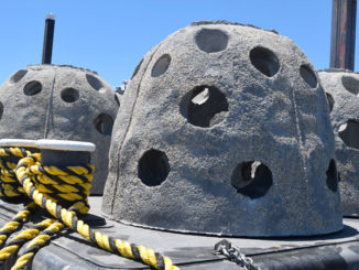 Reefballs like this one, along with large chunks of limestone and some shells, will be used in construction of new artificial reefs proposed for four sites in Lake Borgne and the Mississippi Sound.