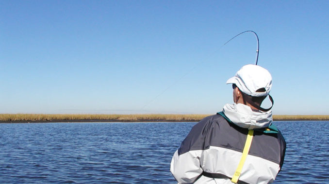 Having a tug-of-war with big fish in shallow water is the main attraction to saltwater fly fishing.
