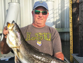 This speckled trout should have NEVER been there!
