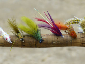 A few of the author's favorite second season bass flies, left to right, Coma Cocaho, Yukbugger Y2K, Moss Kray Phish, SR71 Seaducer, Wilson's Bass Bully, Dahlberg Diver.
