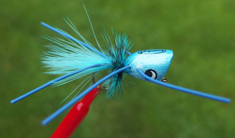 One of the most popular commercial bass poppers today is the Boogle Bug in Carolina Blue.