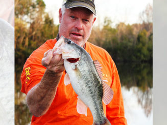 A drop-shot rig will produce bass that have been hammered with other baits.