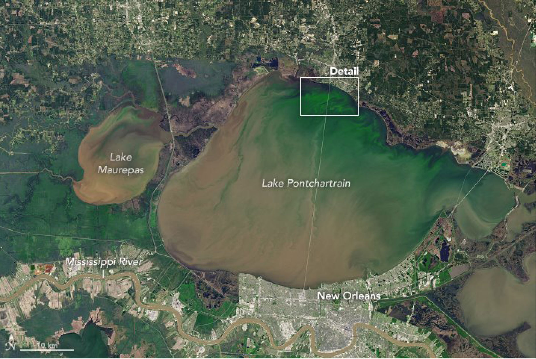Blue-green algae can be seen in this image from March. (Photo courtesy Rob Perillo)