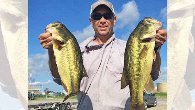 Venice bass are biting on higher water since the amount of roseau cane has diminished.