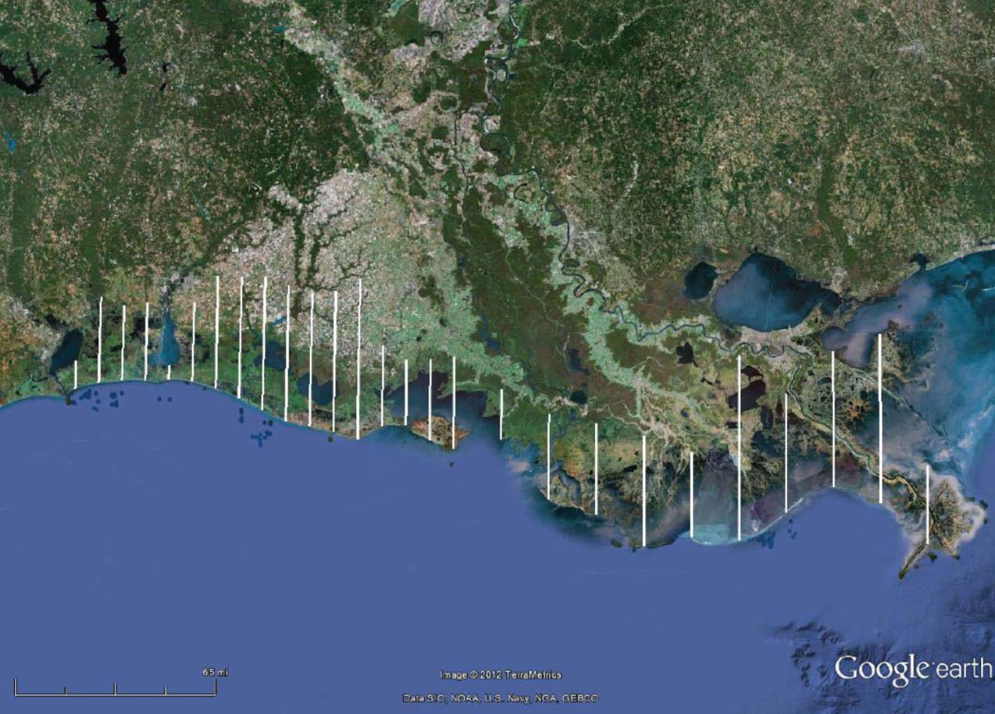 Location of 27 transect lines flown in September, November, December, and January to estimate duck abundance, species composition, and relative habitat use in coastal Louisiana.