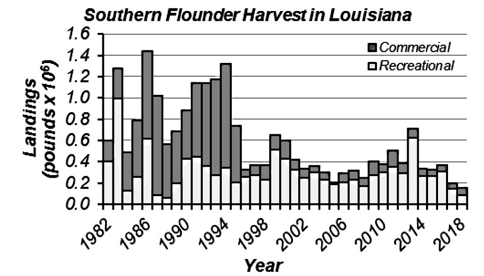 Recreational and commercial flounder landings - According to a draft copy of Assessment of Southern Flounder Paralicthys lethostigma in Louisiana Waters 2020 Report - the 2017 and 2018 combined recreational and commercial harvests of southern flounder are also the lowest on record.