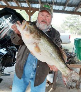 Jeff Brown and his 11-pound Lake Claiborne bass he hooked on a jig while crappie fishing.