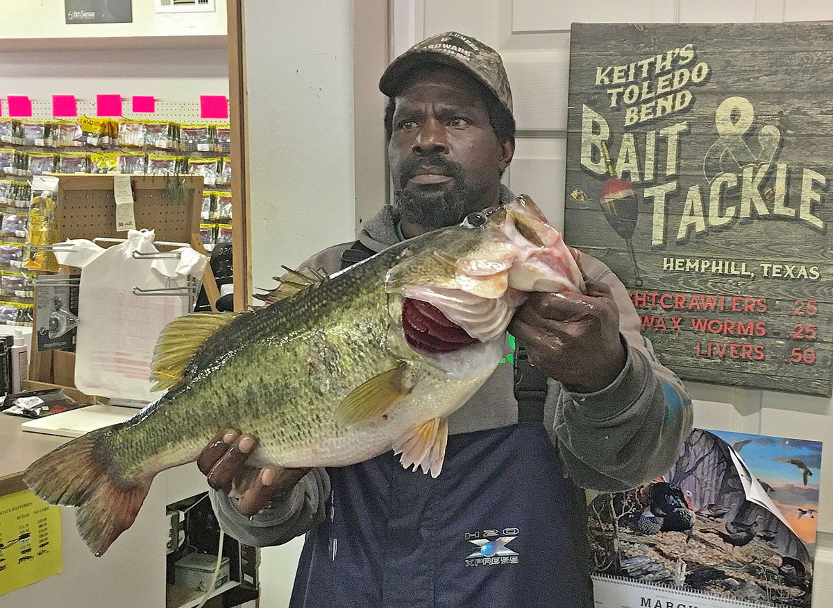 This Toledo Bend 10.35-pounder was taken March 21 by Tommy Washington after the huge bass broke off the angler's first hookset and later attacked his retied Senko. It was caught with the first hook still in its mouth five minutes later. (Photo courtesy of Toledo Bend Lake Association)