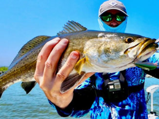 Finding speckled trout during a warm April