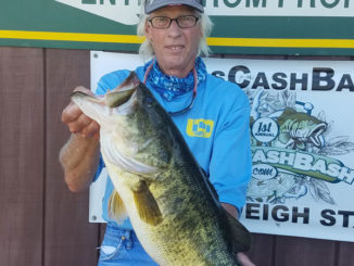 Lily pad fields will hold some 'pad pigs' at Toledo Bend