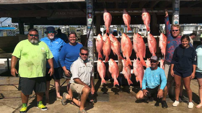 On July 18, (left to right) Chuk Cole, Bob Cole, Jessica Spooner, Tracey Jones, Corey Harwell, Matthew Spooner, Sailor Cole and Shelby Cole caught these snapper on a trip out of Venice.